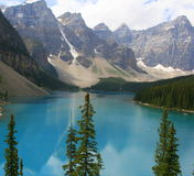 Pine trees and blue waters, Moraine Lake, Alberta, Canada Stock Images