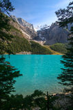 Moraine Lake at the Banff National Park Royalty Free Stock Photo