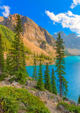 Moraine Lake Banff National Park. Moraine Lake overlook Banff National Park Royalty Free Stock Photo