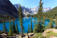 Moraine Lake. In the Banff Nationalpark in Alberta Canada Royalty Free Stock Image