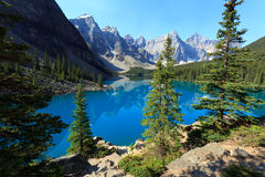 Moraine Lake. In the Banff Nationalpark in Alberta Canada Royalty Free Stock Photos