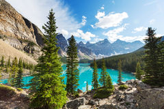 Moraine lake. Beautiful Moraine lake in Banff National park, Canada Royalty Free Stock Images