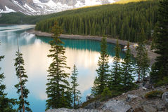 Moraine lake and forests Stock Photos