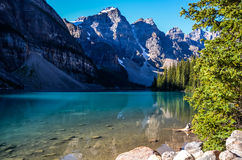Moraine Lake in the morning sunlight Royalty Free Stock Photo