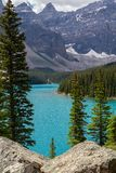 Moraine Lake in the Rocky Mountains. Moraine Lake is a beautiful mountain lake nestled in the Rocky Mountains in Banff National Park in Canada. Evergreen Trees Royalty Free Stock Photography