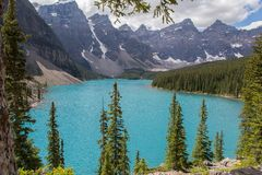 Moraine Lake in the Rocky Mountains. Moraine Lake is a beautiful turquoise mountain lake nestled in the Rocky Mountains in Banff National Park in Canada Royalty Free Stock Image