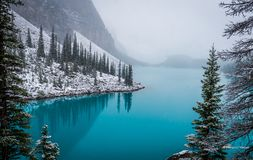 Moraine lake in a snowy day. Glacial fed lake moraine in banff national park royalty free stock images