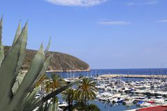 Moraira marina port view from agave Stock Photos