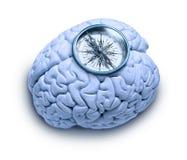Moralisches Kompass-Gehirn Stockbild
