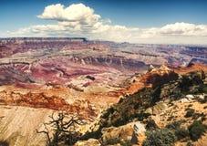 Moran Point sikt - Grand Canyon, södra kant - Arizona, AZ Arkivbild