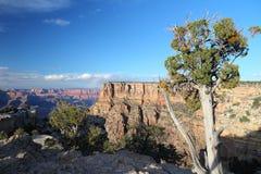 Moran Punkt, Grand Canyon Stockfotos