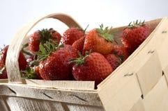 Morango Foto de Stock Royalty Free