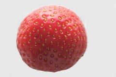 Morango Imagem de Stock
