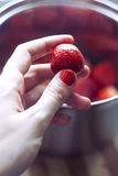 Morango Fotografia de Stock Royalty Free
