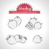 Morango Ajuste dos frutos frescos, inteiro, meio e mordido com folha Ilustração do vetor Isolado no fundo branco ilustração royalty free
