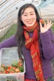 Morango da colheita Foto de Stock