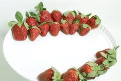 A morango de jardim ? uma esp?cie h?brida extensamente crescida do g?nero Fragaria, conhecida coletivamente como as morangos imagem de stock royalty free