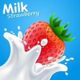Morango do leite da etiqueta Ilustração do vetor Fotografia de Stock
