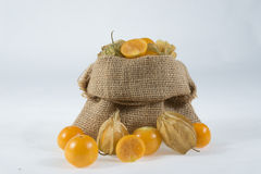 Morango dourada (Physalis) Fotos de Stock Royalty Free
