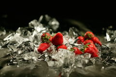 Morango e gelo Imagem de Stock