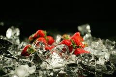 Morango e gelo Imagens de Stock