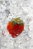 Morango em cubos de gelo Fotos de Stock Royalty Free