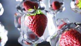Morango em cubos de gelo Alimento e conceito da transmissão Materiais realísticos do gelo rendição 3d Fotos de Stock
