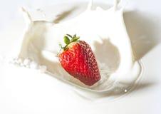 Morango em um creme Fotografia de Stock