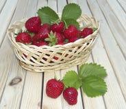 Morango em uma cesta wattled Fotos de Stock Royalty Free