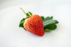 Morango fresca Foto de Stock