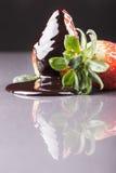 Morango madura deliciosa fotografia de stock
