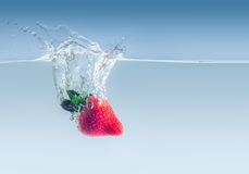 Morango na água Fotografia de Stock Royalty Free