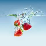 Morango na água Fotos de Stock Royalty Free