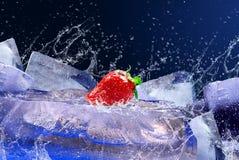 Morango no gelo Imagem de Stock Royalty Free