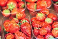 Morango no mercado Foto de Stock Royalty Free