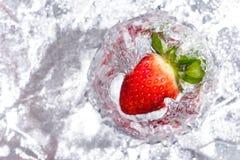 Morango no vidro no stopmotion de prata do refletor Foto de Stock