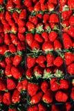 Morango perfeita madura Vista superior, produto de alta resolução Fotografia de Stock Royalty Free