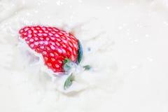 Morango que cai em uma bacia de leite com espirro do leite foto de stock