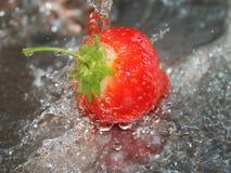 Morango sob a água corrente Fotografia de Stock