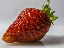 Morango vermelha fresca em um fundo branco imagens de stock royalty free
