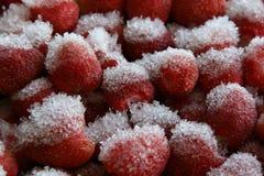 Morangos de Snowfrosted Imagens de Stock