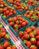 Morangos do mercado da exploração agrícola Fotografia de Stock Royalty Free