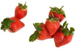 Morangos doces suculentas gordas maduras frescas Imagens de Stock