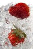 Morangos em cubos de gelo Imagem de Stock