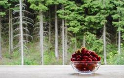 Morangos em uma bacia de vidro no fundo da floresta imagem de stock royalty free