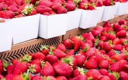 Morangos frescas Foto de Stock Royalty Free