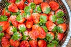Morangos frescas com as bagas vermelhas brilhantes na cesta fotos de stock