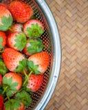 Morangos frescas com as bagas vermelhas brilhantes na cesta imagens de stock royalty free