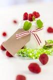 Morangos frescas com iogurte saudável Imagens de Stock
