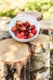 Morangos frescas e apetitosas com as cerejas vermelhas no log de madeira Imagem de Stock